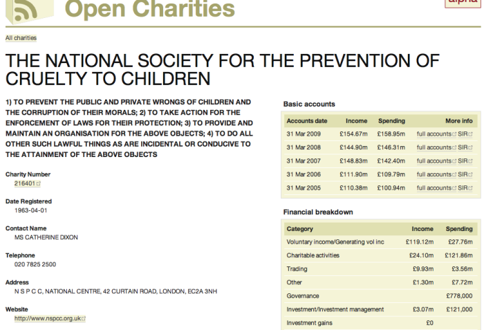 Example of financial info for charity